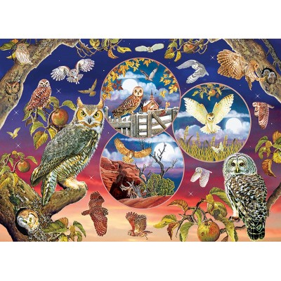 Puzzle  Cobble-Hill-80220 Owl Magic