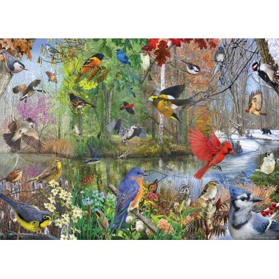 Puzzle  Cobble-Hill-80243 Birds of the Season