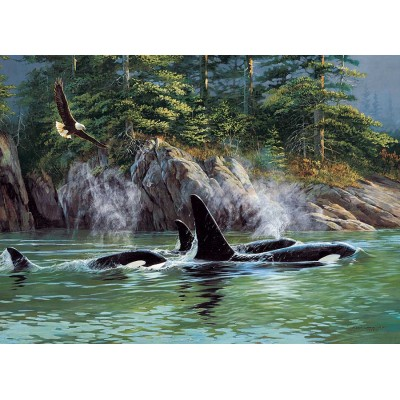 Puzzle  Cobble-Hill-80249 Orcas