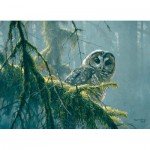 Puzzle  Cobble-Hill-85002 XXL Teile - Mossy Branches - Spotted Owl