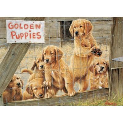 Puzzle Cobble-Hill-85019 XXL Teile - Golden Puppies