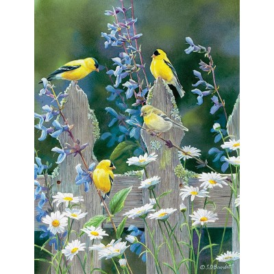 Puzzle  Cobble-Hill-85037 XXL Teile - Susan Bourdet - Goldfinch Quartet