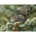 Puzzle  Cobble-Hill-88016 XXL Teile - Gray Squirrel