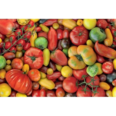 Puzzle  Piatnik-5369 Tomaten