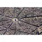 Puzzle  Piatnik-5376 Collection Skyview: Paris
