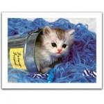 Pintoo-H1040 Puzzle aus Kunststoff - Kitten