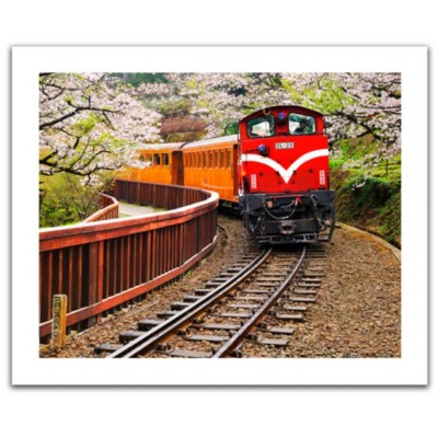 Pintoo-H1482 Puzzle aus Kunststoff - Forest Train in Alishan National Park, Taiwan
