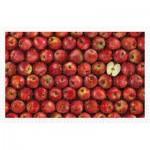 Pintoo-H2006 Puzzle aus Kunststoff - Fruits - Apple
