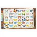 Pintoo-H2027 Puzzle aus Kunststoff - Beautiful Butterflies