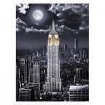 Pintoo-H2120 Puzzle aus Kunststoff - Darren Mundy - Empire State Building