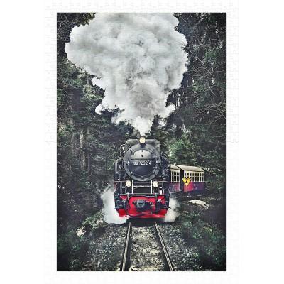 Pintoo-H2159 Puzzle aus Kunststoff - The Steam Train, Switzerland