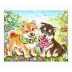 Puzzle  Pintoo-H2281 Kayomi - Shiba Puppies' First Errand