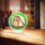 Pintoo-J1012 3D Puzzle - Sphere Light - Eulen und Kätzchen im grünen Wald