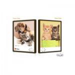 Pintoo-U1028 Puzzle Push aus Kunststoff 48 Teile - Hunde und Katzen