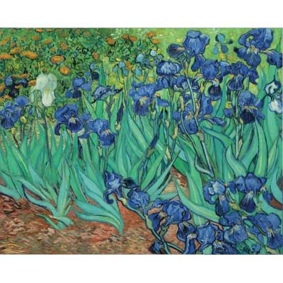 Puzzle  Pomegranate-AA331 Van Gogh: Irises