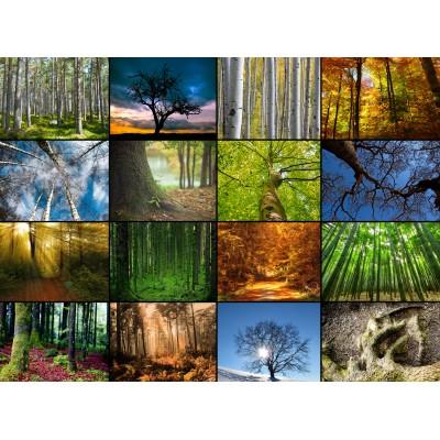 Grafika-Wood-00020 Holzpuzzle - Collage - Bäume