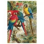 Puzzle-Michele-Wilson-A642-250 Puzzle aus handgefertigten Holzteilen - Brehm Papageien