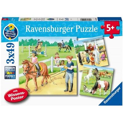 Ravensburger-05129 3 Puzzles - Ein Tag Auf Dem Reiterhof