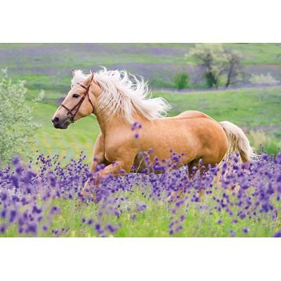 Ravensburger-05148 2 Puzzles - Pferde