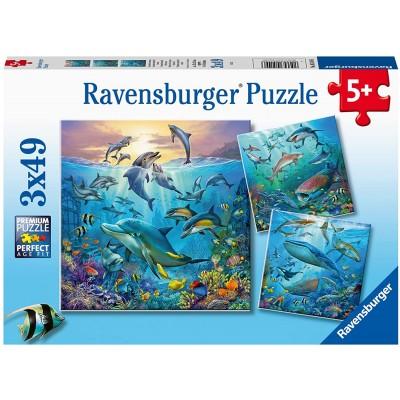 Ravensburger-05149 3 Puzzles - Tierwelt des Ozeans