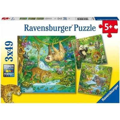 Ravensburger-05180 3 Puzzles - Jungle Animals