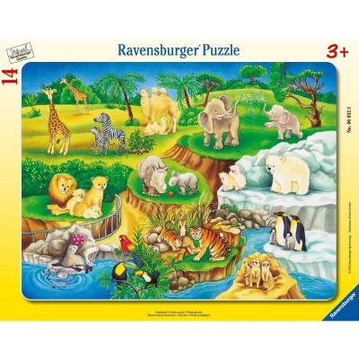 Ravensburger-06052 Rahmenpuzzle - Zoobesuch