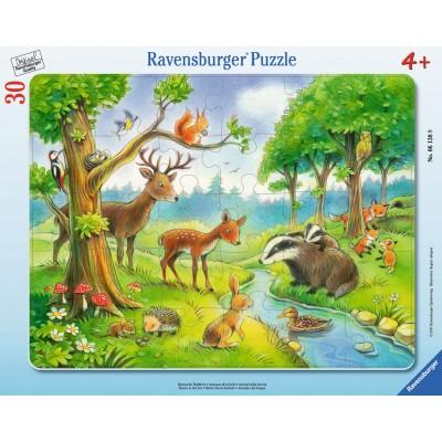 Ravensburger-06138 Rahmenpuzzle - Heimische Waldtiere
