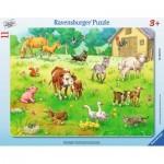 Ravensburger-06143 Rahmenpuzzle - Meine Lieblingstiere