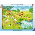 Ravensburger-06145 Rahmenpuzzle - Spaziergang auf dem Land
