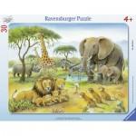 Ravensburger-06146 Rahmenpuzzle - Afrikas Tierwelt