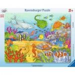 Ravensburger-06149 Rahmenpuzzle - Fröhliche Meeresbewohner