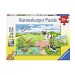 Ravensburger-07582 2 Puzzles - Tierkinder auf dem Land