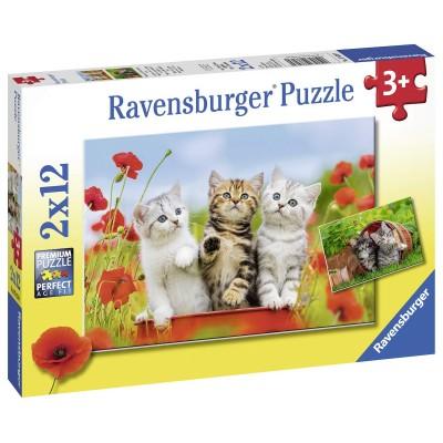 Ravensburger-07626 2 Puzzles - Kätzchen