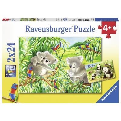 Ravensburger-07820 2 Puzzles - Süße Koalas und Pandas