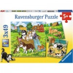 Ravensburger-08002 3 Puzzles - Süße Katzen und Hunde