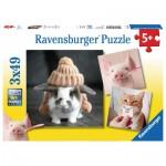 Ravensburger-08028 3 Puzzles - Witzige Tierportraits
