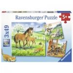 Ravensburger-08029 3 Puzzles - Kuschelzeit