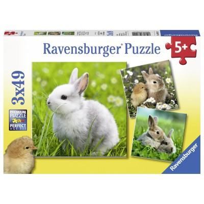 Ravensburger-08041 3 Puzzles - Niedliche Häschen