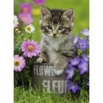 Puzzle  Ravensburger-10847 Kleines Kätzchen in den Blumen
