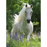 Puzzle  Ravensburger-12927 XXL Teile - White Horse