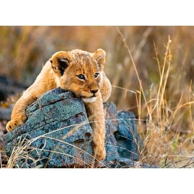 Puzzle Ravensburger-12946 Young Lion