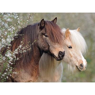Puzzle  Ravensburger-12986 XXL Teile - Horses