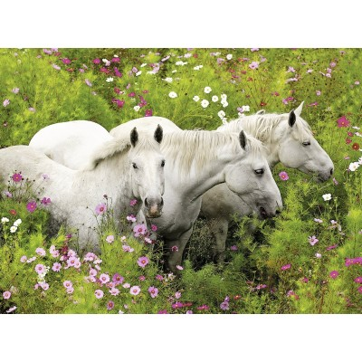 Puzzle  Ravensburger-13218 XXL Teile - Pferde auf der Blumenwiese