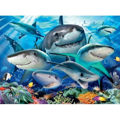 Puzzle  Ravensburger-13225 XXL Teile - Lächelnde Haie