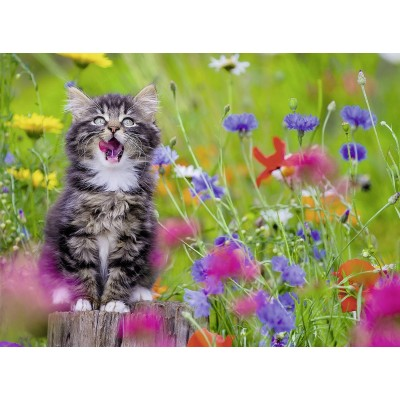 Puzzle  Ravensburger-13616 XXL Teile - Katze im Blumenmeer