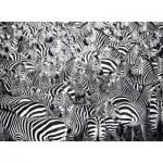 Ravensburger-14807 Challenge Puzzle - Zebra