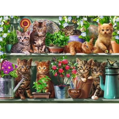 Puzzle Ravensburger-14824 Katzen im Regal