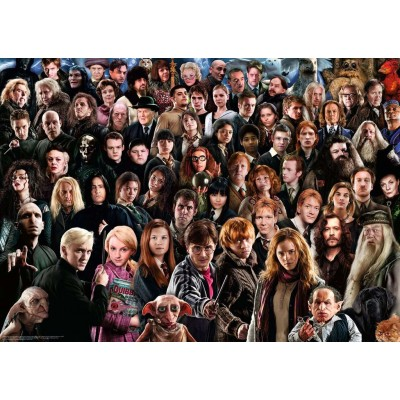 Puzzle  Ravensburger-14988 Challenge - Harry Potter