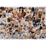 Puzzle  Ravensburger-15633 Hunde-Collage