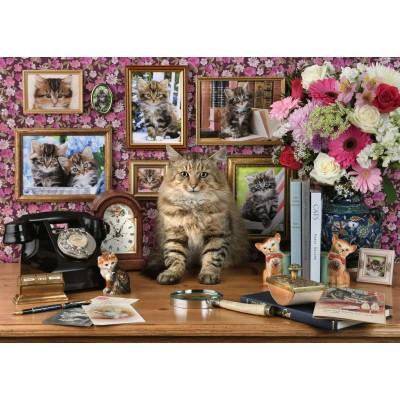 Puzzle  Ravensburger-15994 Meine Kätzchen